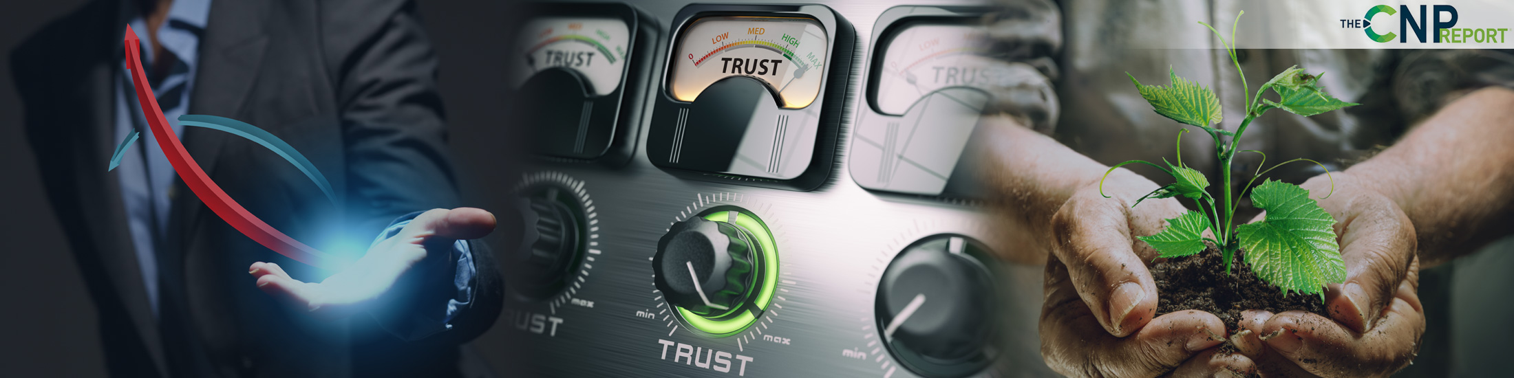 Brands Prioritizing Digital Trust and Safety See Growth