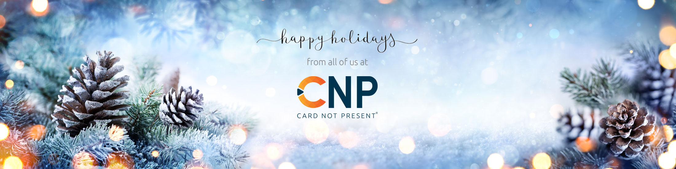Happy Holidays from Card Not Present