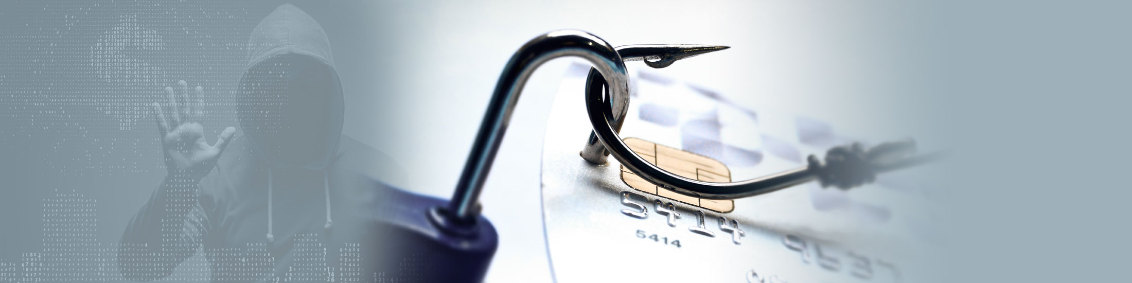 Pandemic Phishing Scams a Top Conduit for Digital Fraud