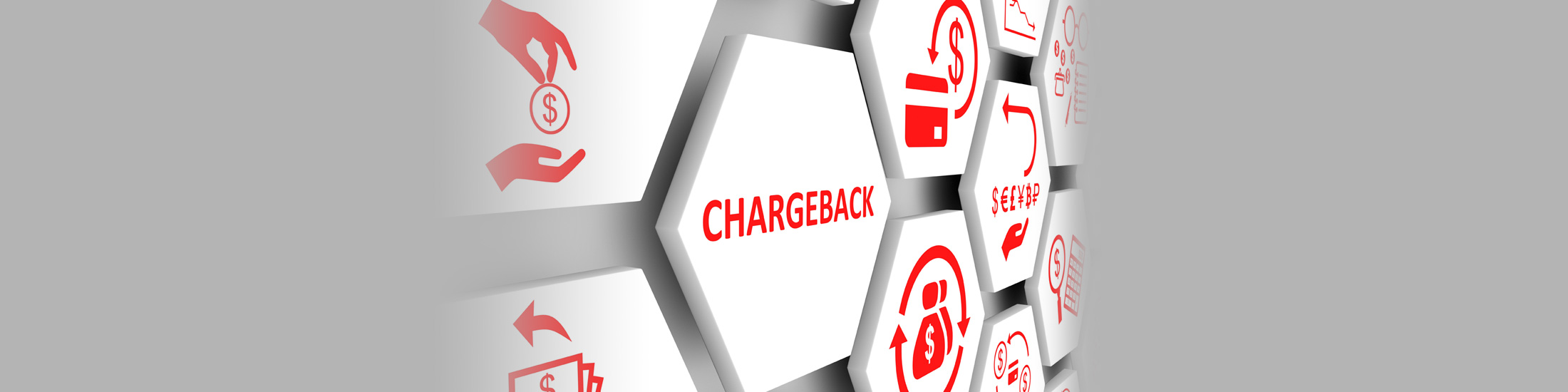 White Paper: Burdensome Chargeback Process Needs Changes