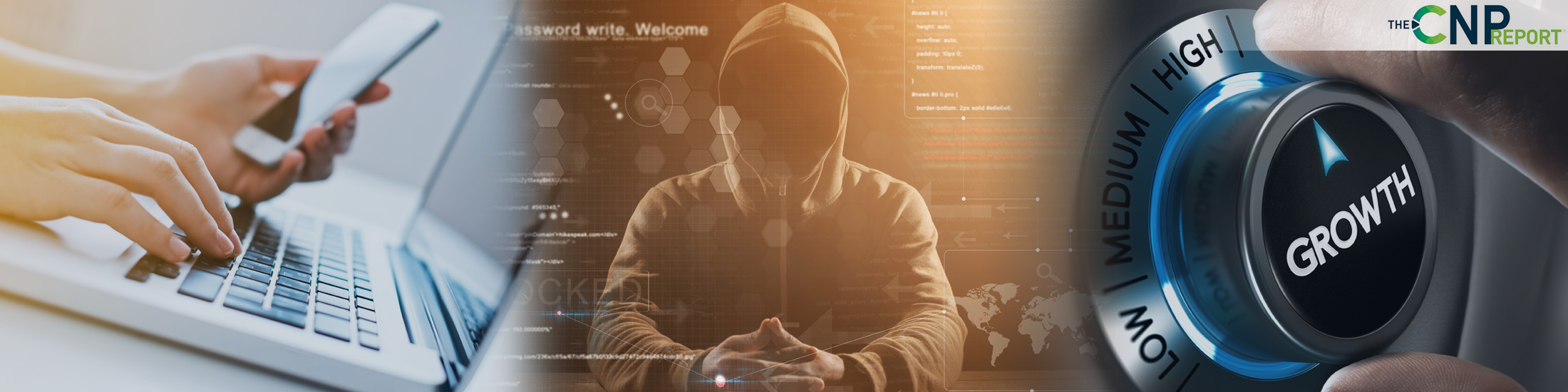 Online Fraud Losses will Double in Five Years: Report